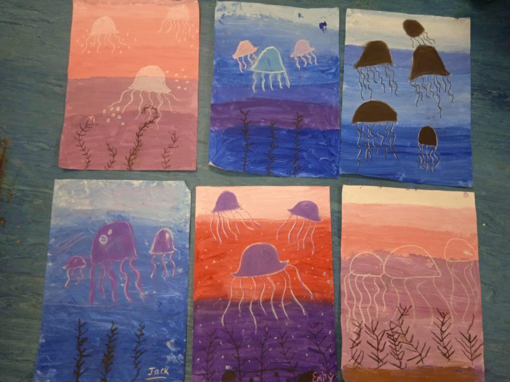 Explorers Education - Jellyfish