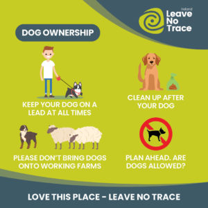 Love This Place Leave No Trace dogs
